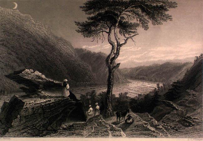 Nathaniel P. Willis. American Scenery