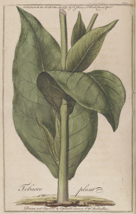 Jonathan Carver, A Treatise on the Culture of the Tobacco Plant, 1779.