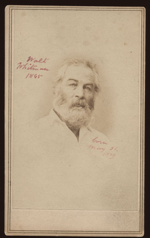 Portrait of Walt Whitman, June 29, 1865