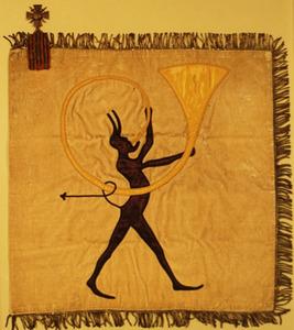 Flag of Section Sanitaire États-Unis 516