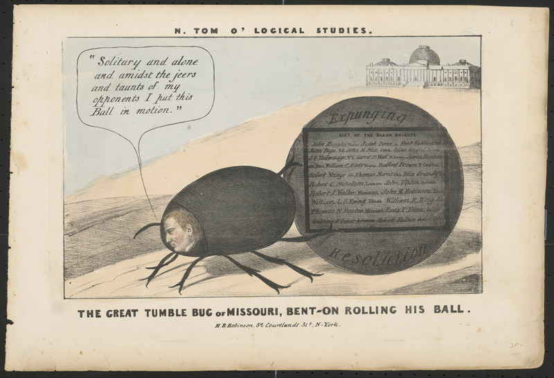 N. Tom o' logical studies. The great tumble bug of Missouri, Bent-on rolling his ball, 1837.