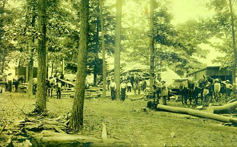 H. Morrison, Jr. Lumber Camp near Mt. Jackson, Shenandoah County, Va. Photograph, c. 1903-10