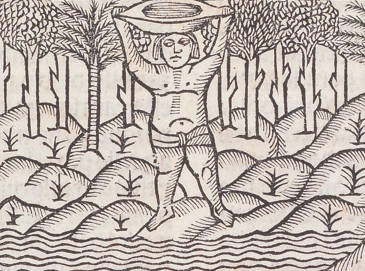 Detail from Gonzalo Fernández de Oviedo y Valdés, La Historia general delas Indias, 1535.