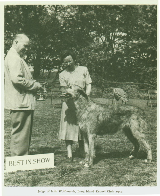 Photograph of Fredson Bowers judging Irish wolfhound competition. 1954.