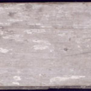 Reed3.jpg