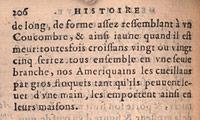 Léry. Histoire, p.206